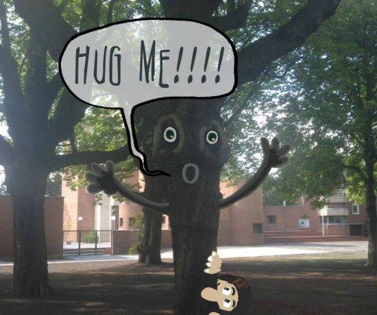 Heute schon ein Baum umarmt?